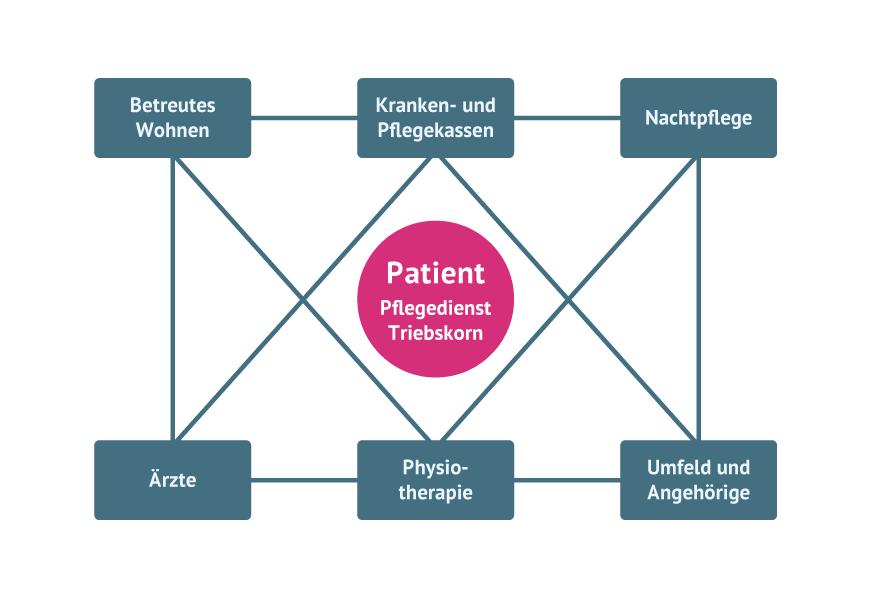 berdürfnisorientiertes Pflegemodell und Kooperationsmodell